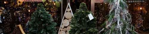 Kerstmarkt Goes