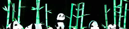 Magische lichtfestival China Light in Rhenen